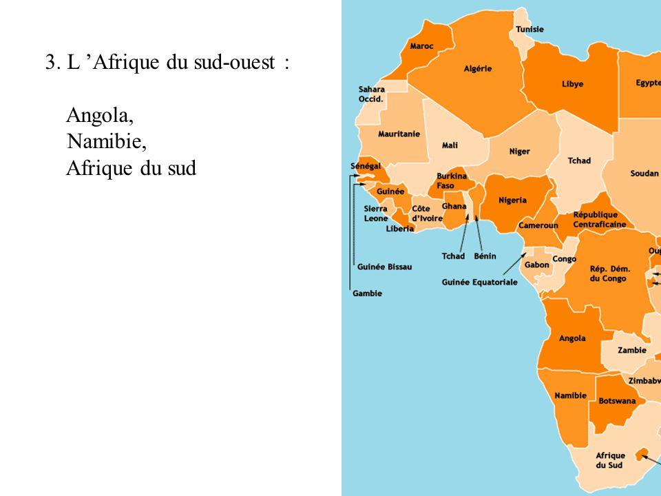 3. L 'Afrique du sud-ouest :