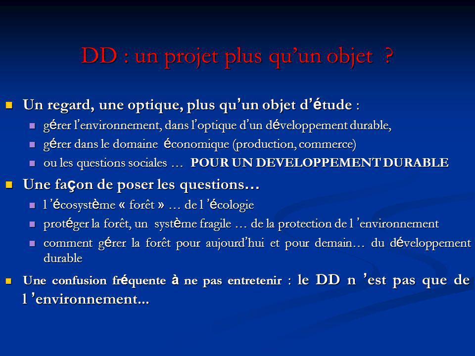 DD : un projet plus qu'un objet