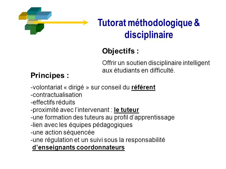 Tutorat méthodologique & disciplinaire