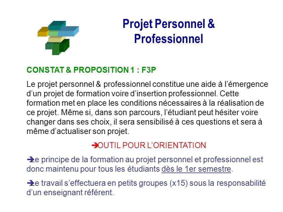 Projet Personnel & Professionnel