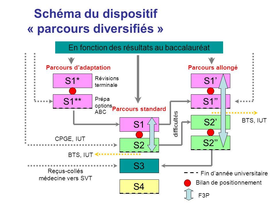 Schéma du dispositif « parcours diversifiés » Parcours d'adaptation
