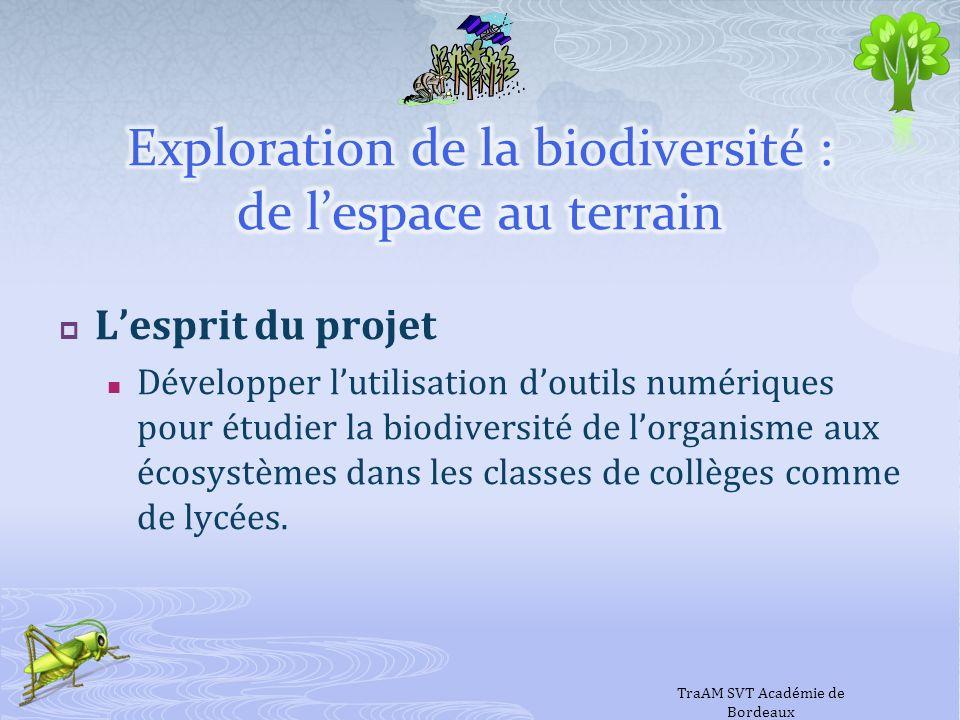 Exploration de la biodiversité : de l'espace au terrain