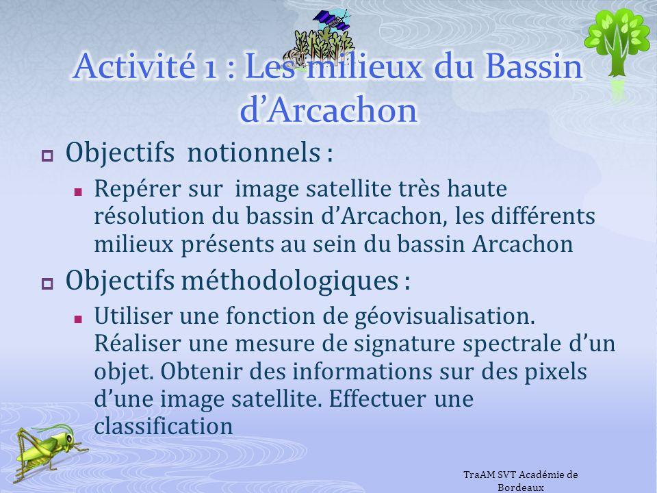 Activité 1 : Les milieux du Bassin d'Arcachon