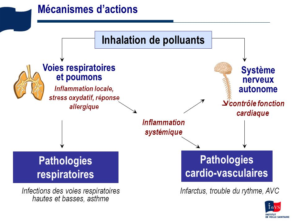 Inhalation de polluants