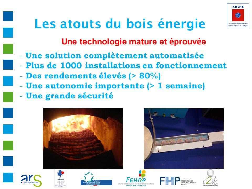 Les atouts du bois énergie