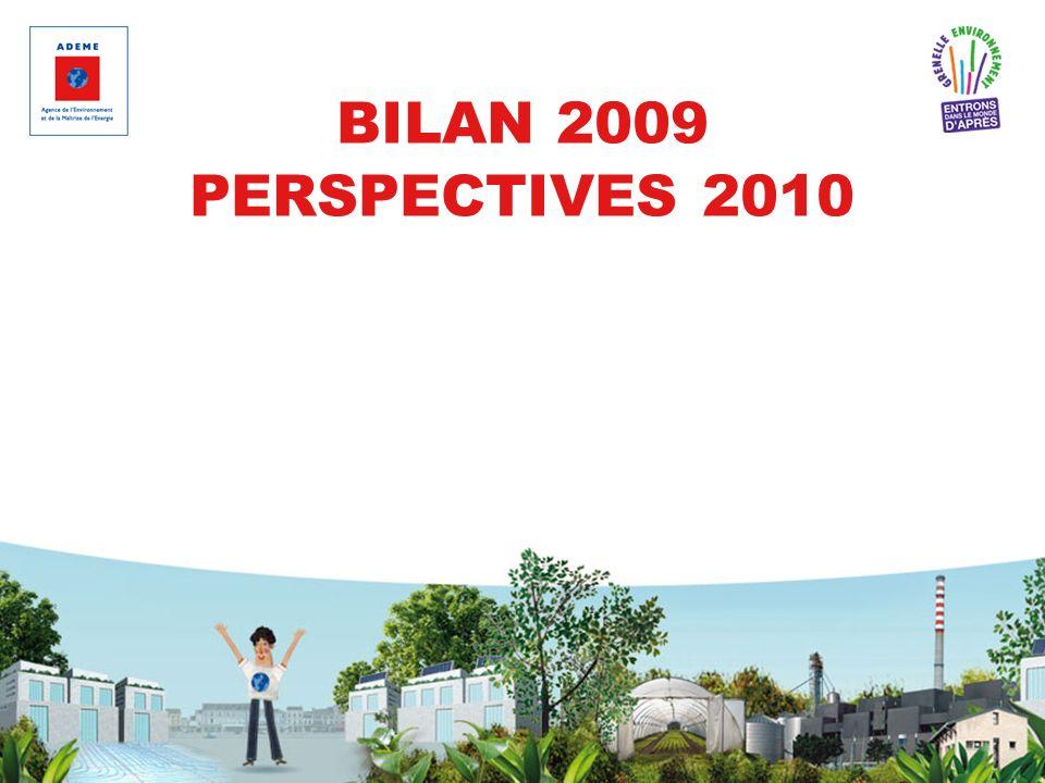 BILAN 2009 PERSPECTIVES 2010