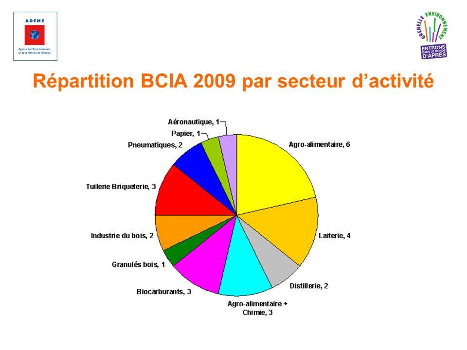 Répartition BCIA 2009 par secteur d'activité