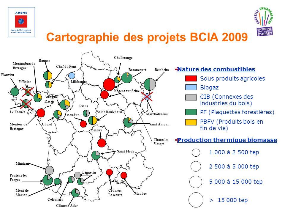 Cartographie des projets BCIA 2009