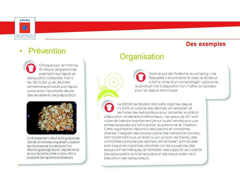 Des exemples Prévention Organisation