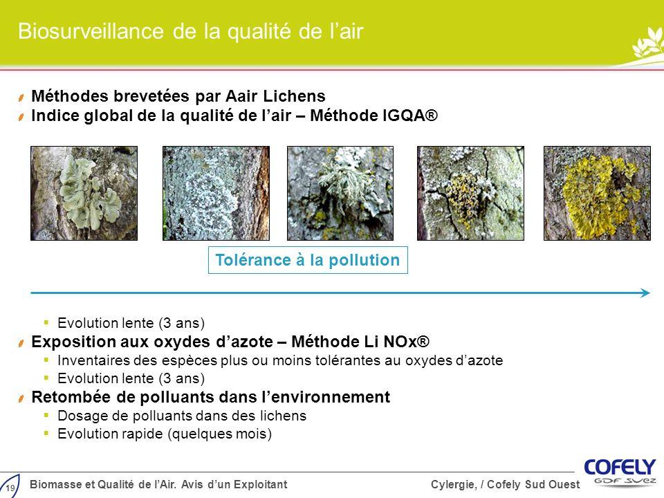 Biosurveillance de la qualité de l'air