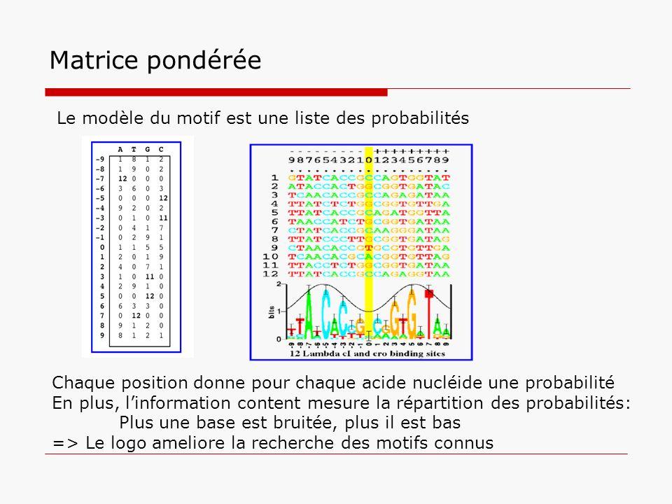 Matrice pondérée Le modèle du motif est une liste des probabilités
