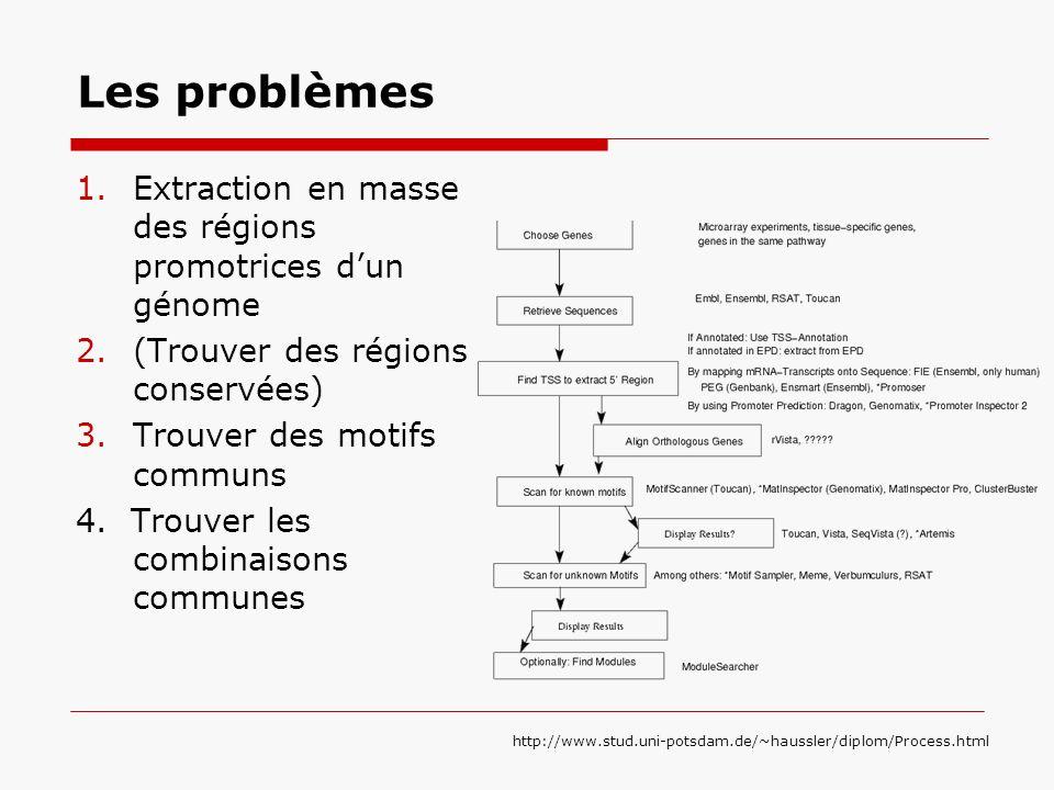 Les problèmes Extraction en masse des régions promotrices d'un génome