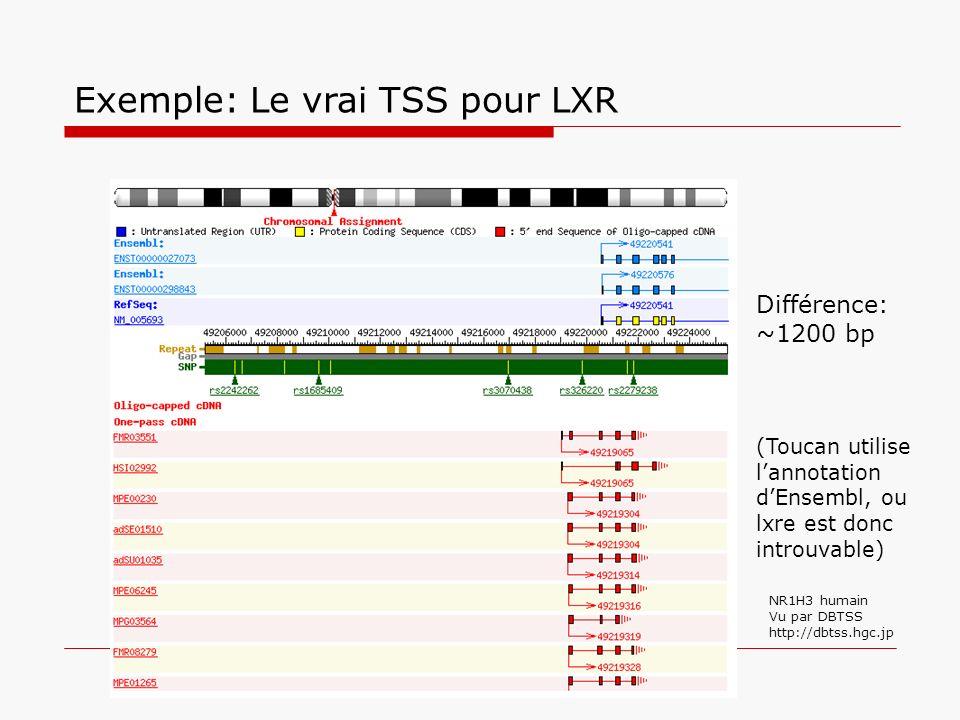 Exemple: Le vrai TSS pour LXR