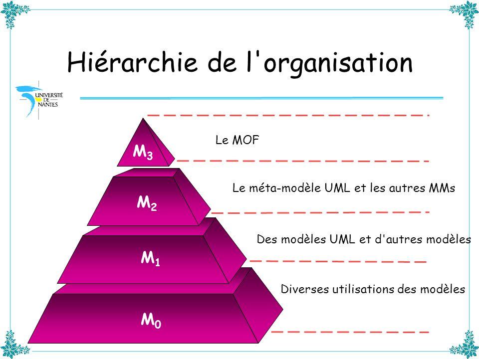 Hiérarchie de l organisation