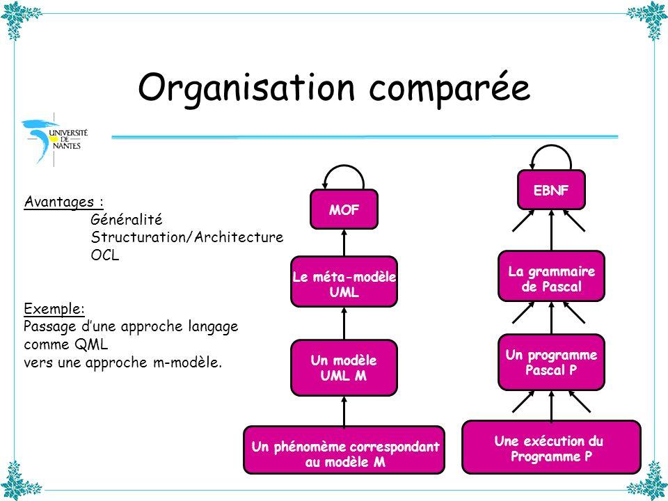 Organisation comparée