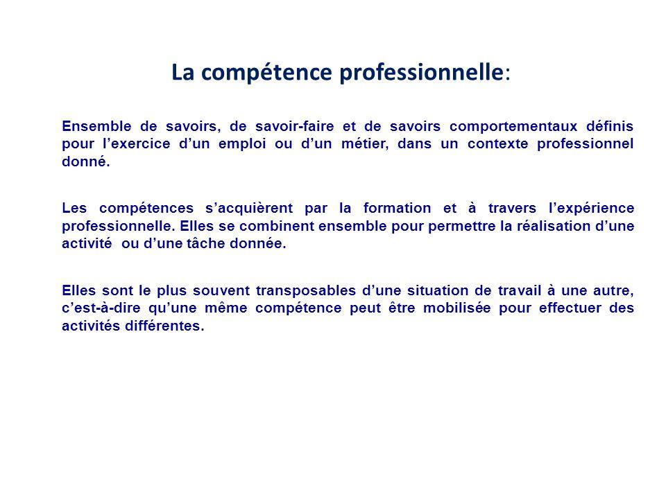 La compétence professionnelle: