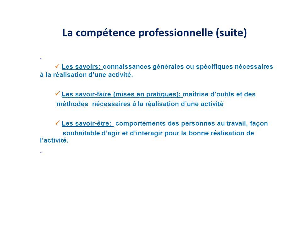 La compétence professionnelle (suite)