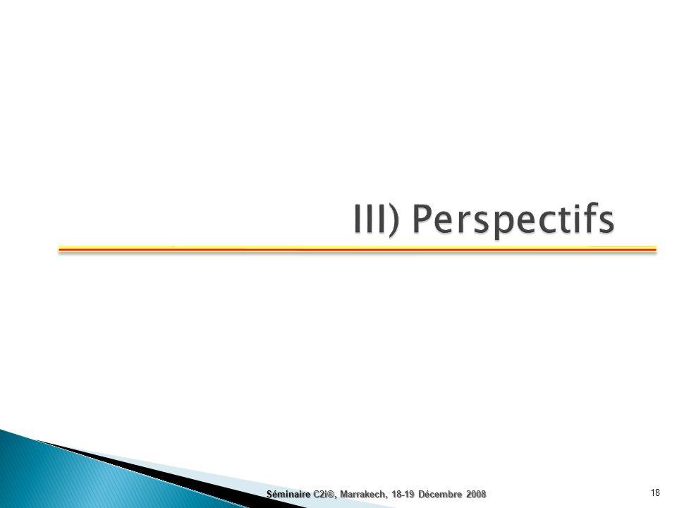 III) Perspectifs Séminaire C2i®, Marrakech, 18-19 Décembre 2008