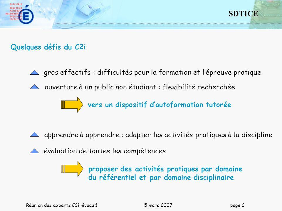 Quelques défis du C2i gros effectifs : difficultés pour la formation et l'épreuve pratique.