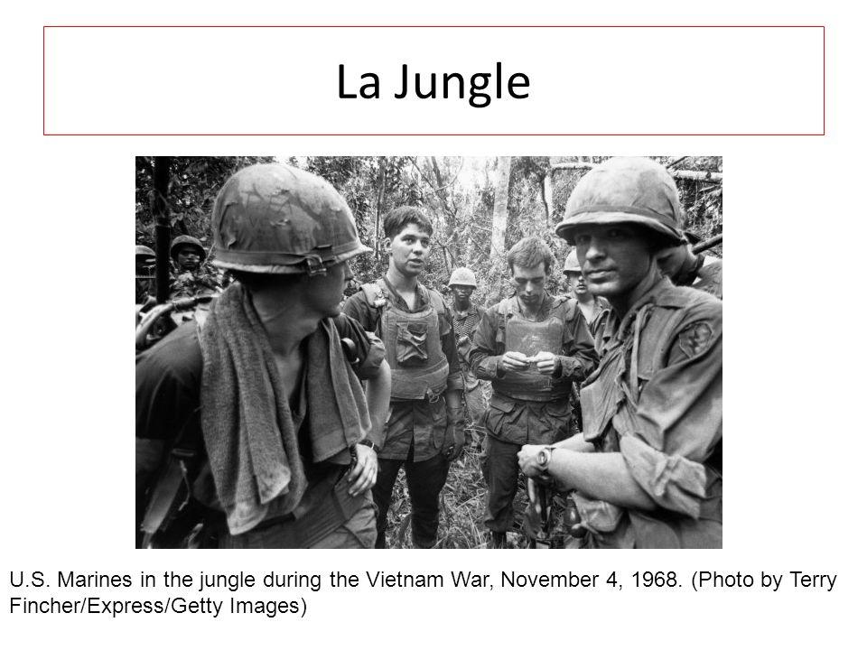 La JungleU.S.Marines in the jungle during the Vietnam War, November 4, 1968.