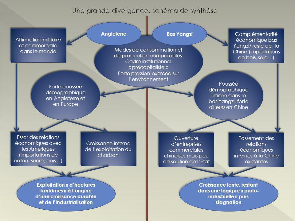 Une grande divergence, schéma de synthèse