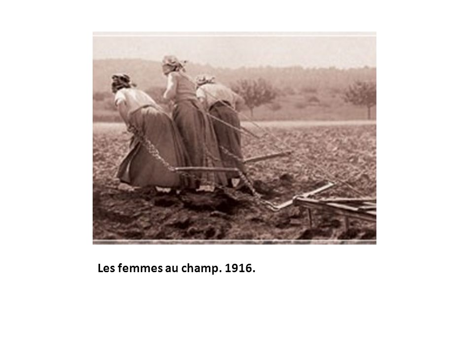 Les femmes au champ. 1916.