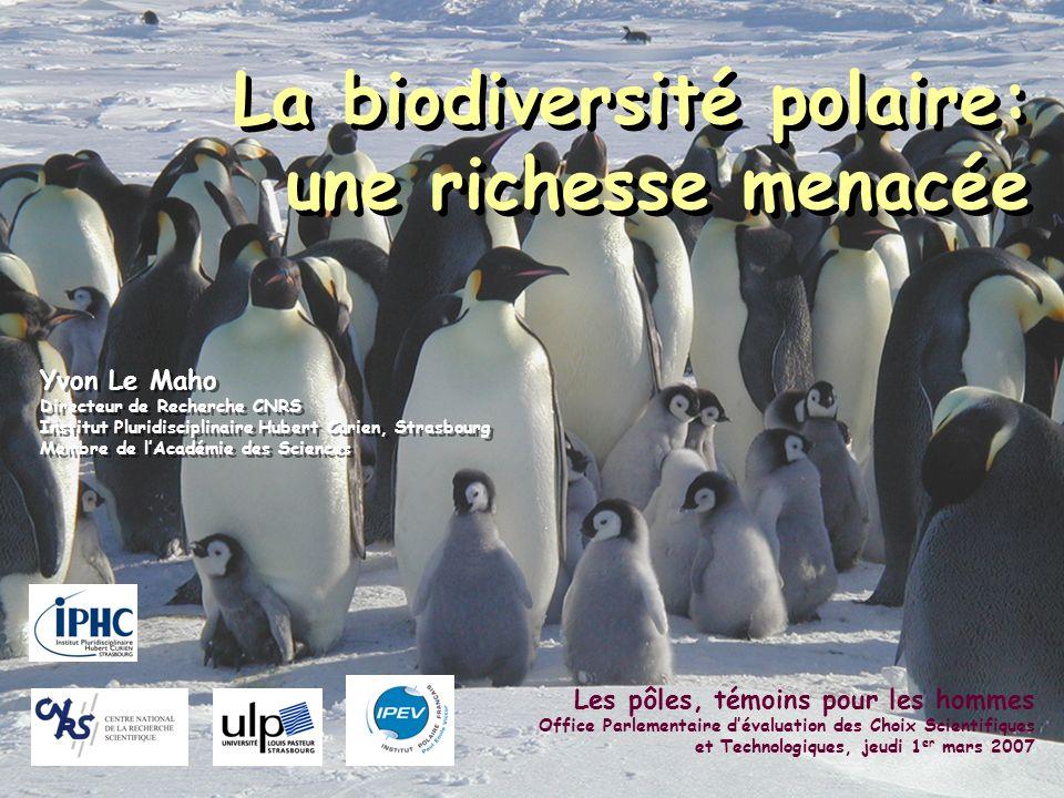 La biodiversité polaire: une richesse menacée