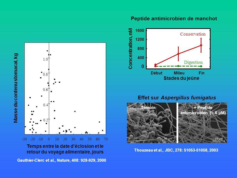 Peptide antimicrobien de manchot