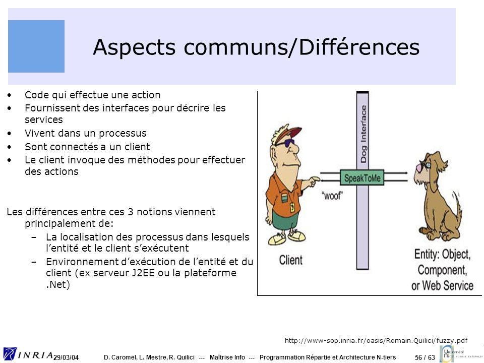 Aspects communs/Différences
