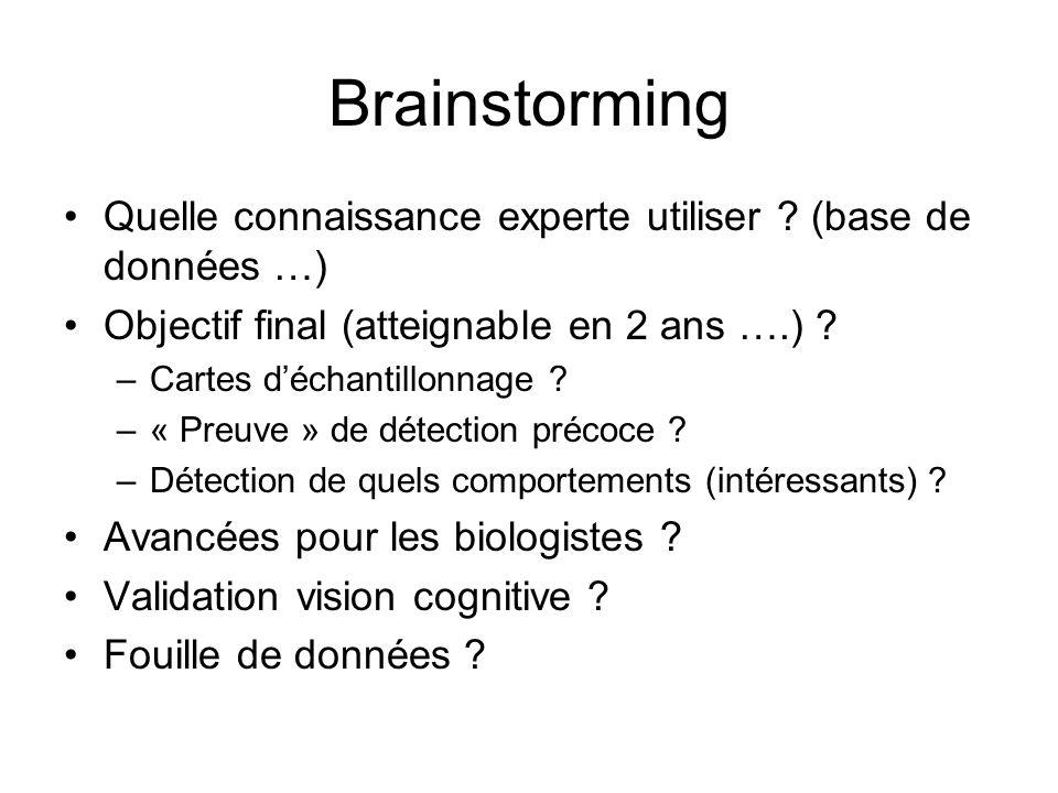Brainstorming Quelle connaissance experte utiliser (base de données …) Objectif final (atteignable en 2 ans ….)