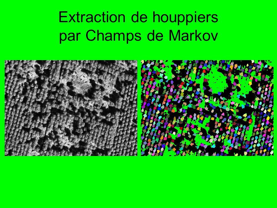 Extraction de houppiers par Champs de Markov
