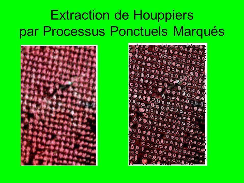Extraction de Houppiers par Processus Ponctuels Marqués