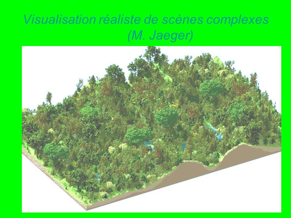 Visualisation réaliste de scènes complexes (M. Jaeger)