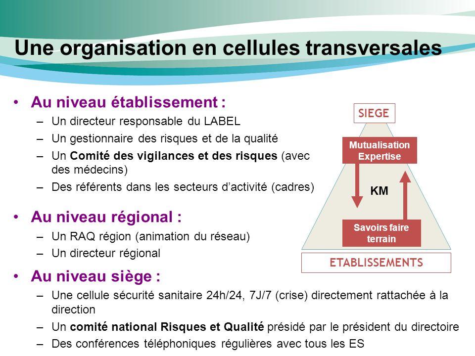 Une organisation en cellules transversales
