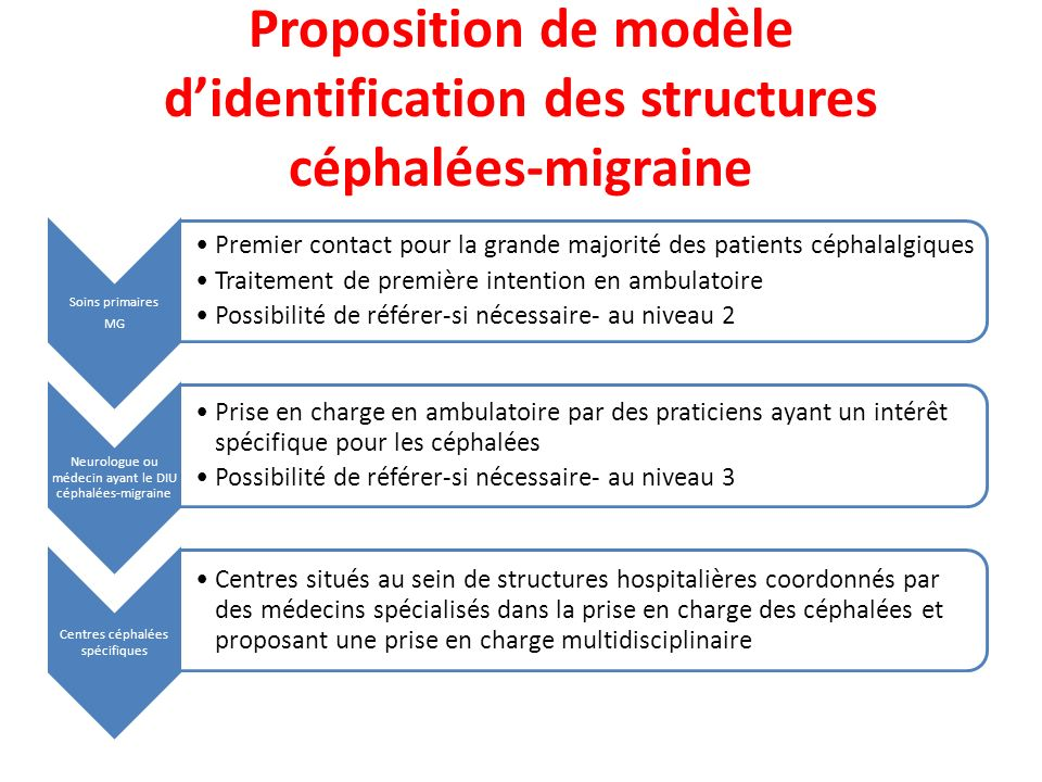 Proposition de modèle d'identification des structures céphalées-migraine