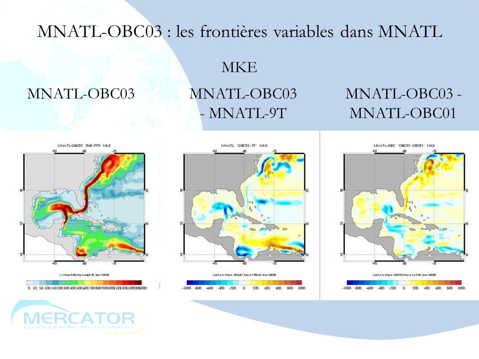 MNATL-OBC03 : les frontières variables dans MNATL