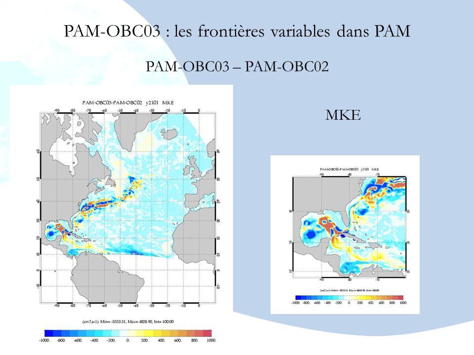 PAM-OBC03 : les frontières variables dans PAM