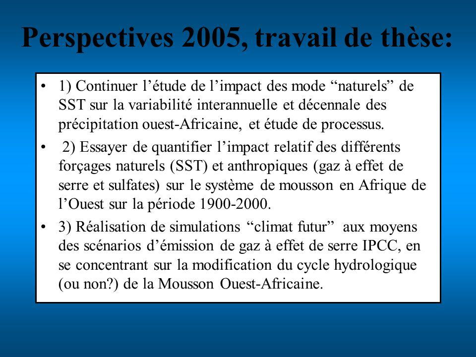 Perspectives 2005, travail de thèse:
