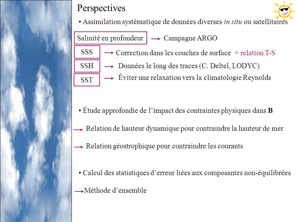 Perspectives Assimilation systématique de données diverses in situ ou satellitaires. Étude approfondie de l'impact des contraintes physiques dans B.