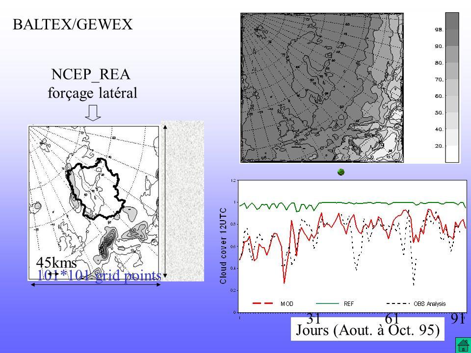 BALTEX/GEWEX NCEP_REA forçage latéral 45kms 101*101 grid points 31 61 91 Jours (Aout. à Oct. 95)
