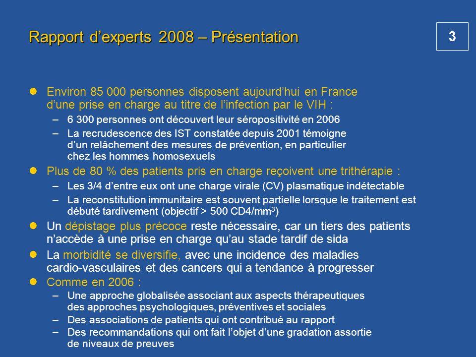 Rapport d'experts 2008 – Présentation