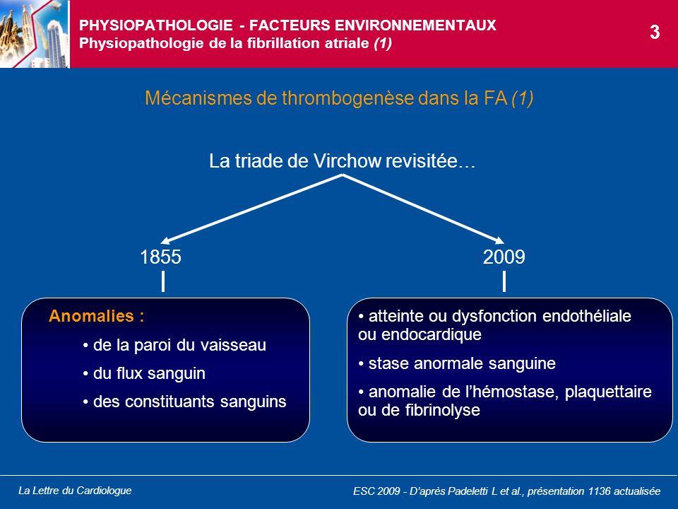 Mécanismes de thrombogenèse dans la FA (1)