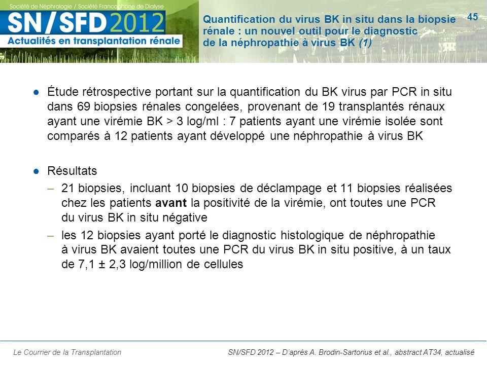 Quantification du virus BK in situ dans la biopsie rénale : un nouvel outil pour le diagnostic de la néphropathie à virus BK (1)