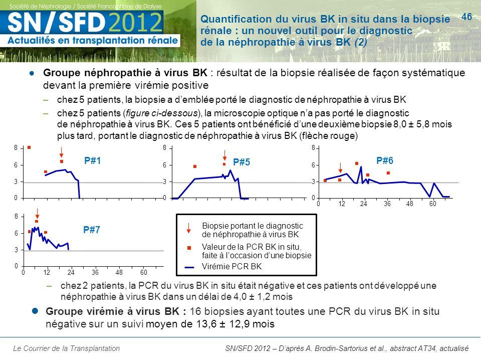 Quantification du virus BK in situ dans la biopsie rénale : un nouvel outil pour le diagnostic de la néphropathie à virus BK (2)