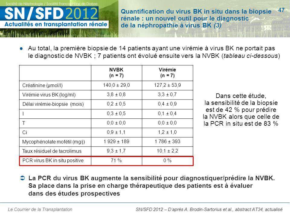 Quantification du virus BK in situ dans la biopsie rénale : un nouvel outil pour le diagnostic de la néphropathie à virus BK (3)