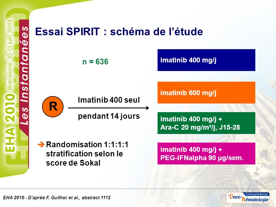 Essai SPIRIT : schéma de l'étude