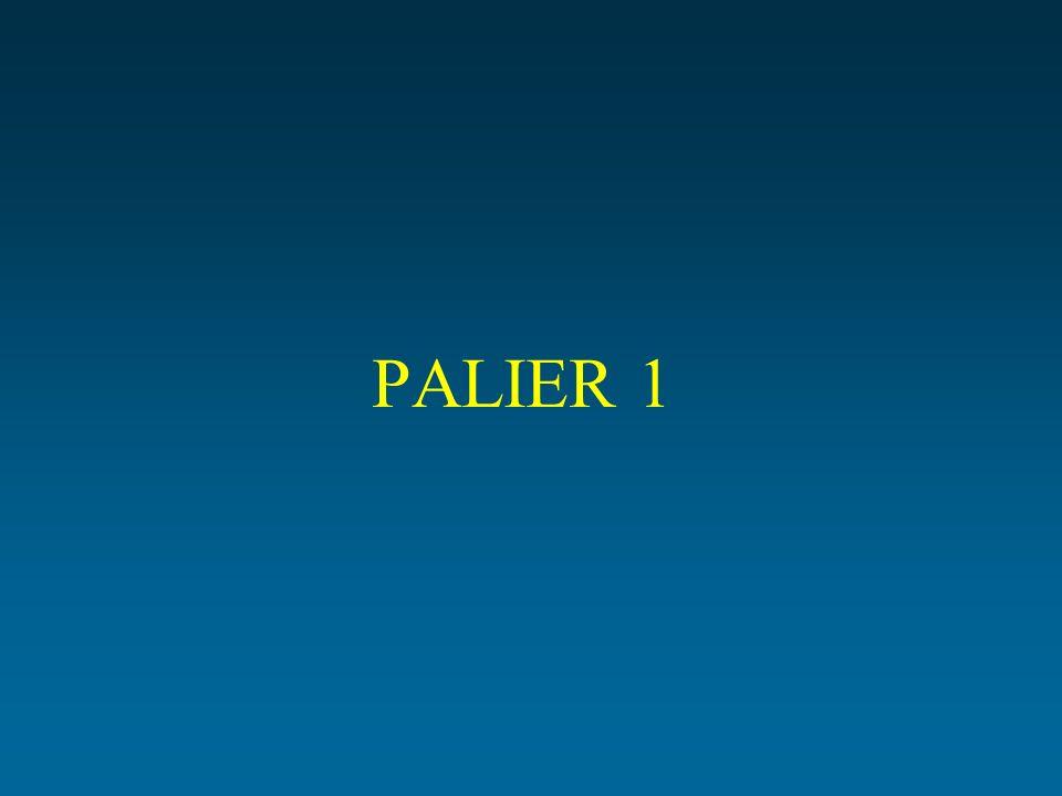 PALIER 1