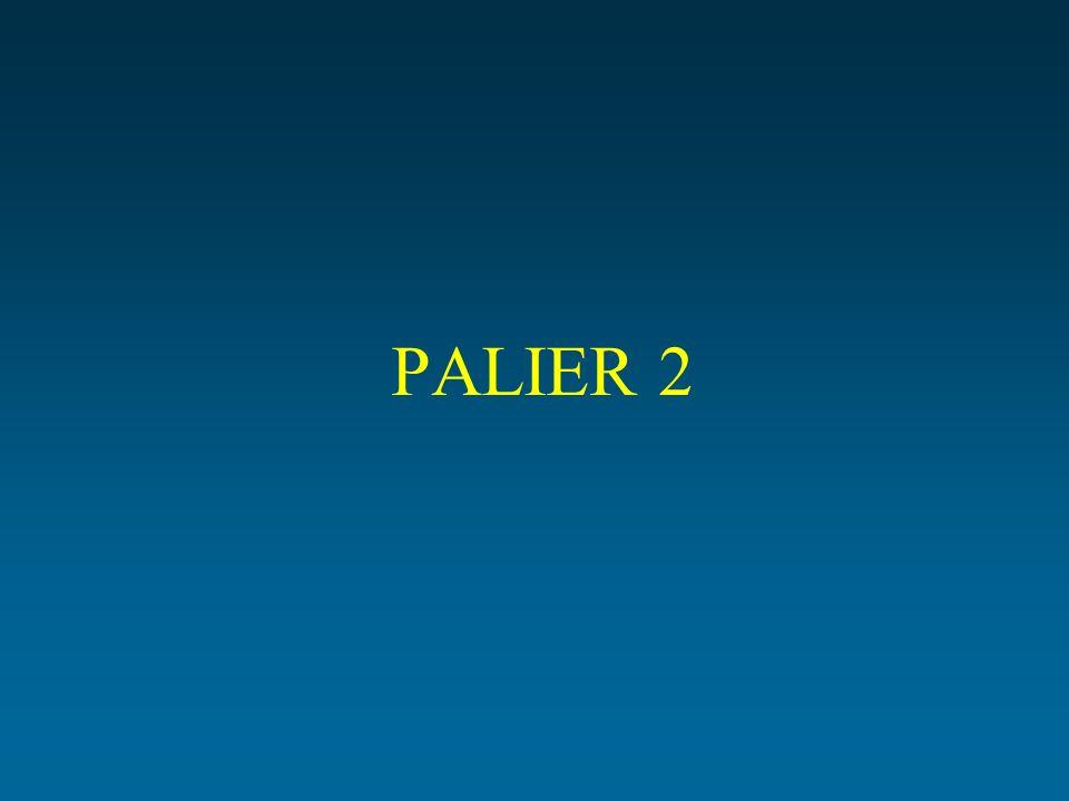 PALIER 2