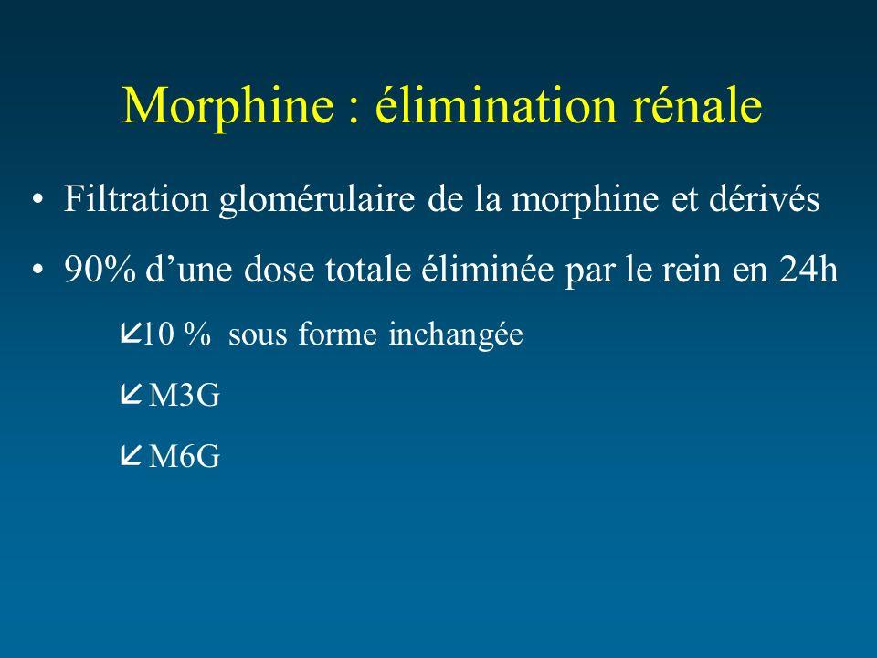 Morphine : élimination rénale