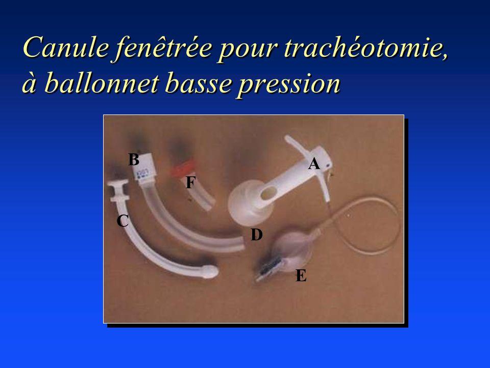 Canule fenêtrée pour trachéotomie, à ballonnet basse pression